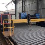 Europäische Qualitäts-CNC-Plasma- und Brennschneidemaschine / Plasma-CNC-Schneidemaschine für Metall